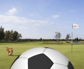 Saare Golfis avatakse esmaspäeval Eesti esimene footgolfi väljak